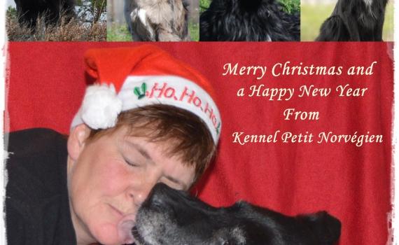God Jul og  et riktig Godt Nyttår