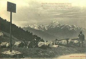 pspcColAspin1924